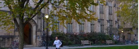 Yale university sexuality studies